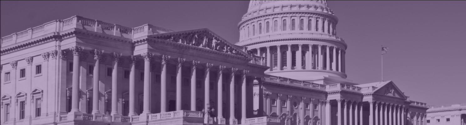 Washington_DC_Capitol_Hill_Banner.png
