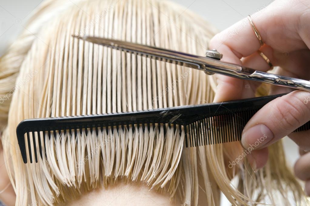 depositphotos_12810940-stock-photo-hairstylist-combing-hair.jpg