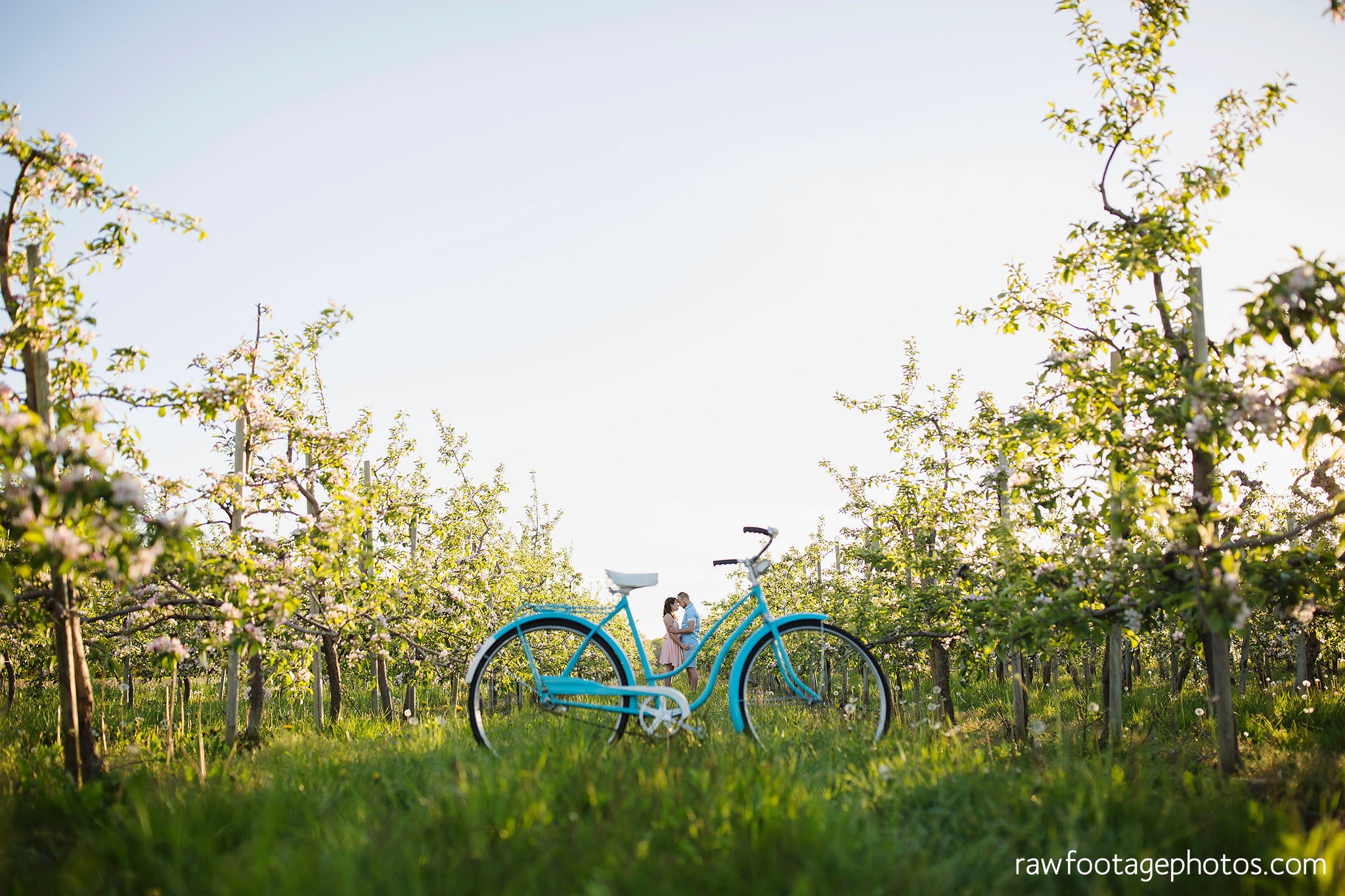 london_ontario_wedding_photographer-raw_footage_photography-engagement_session-airport_session-airplane-balloons-apple_orchard-spring_blooms-apple_blossoms023.jpg