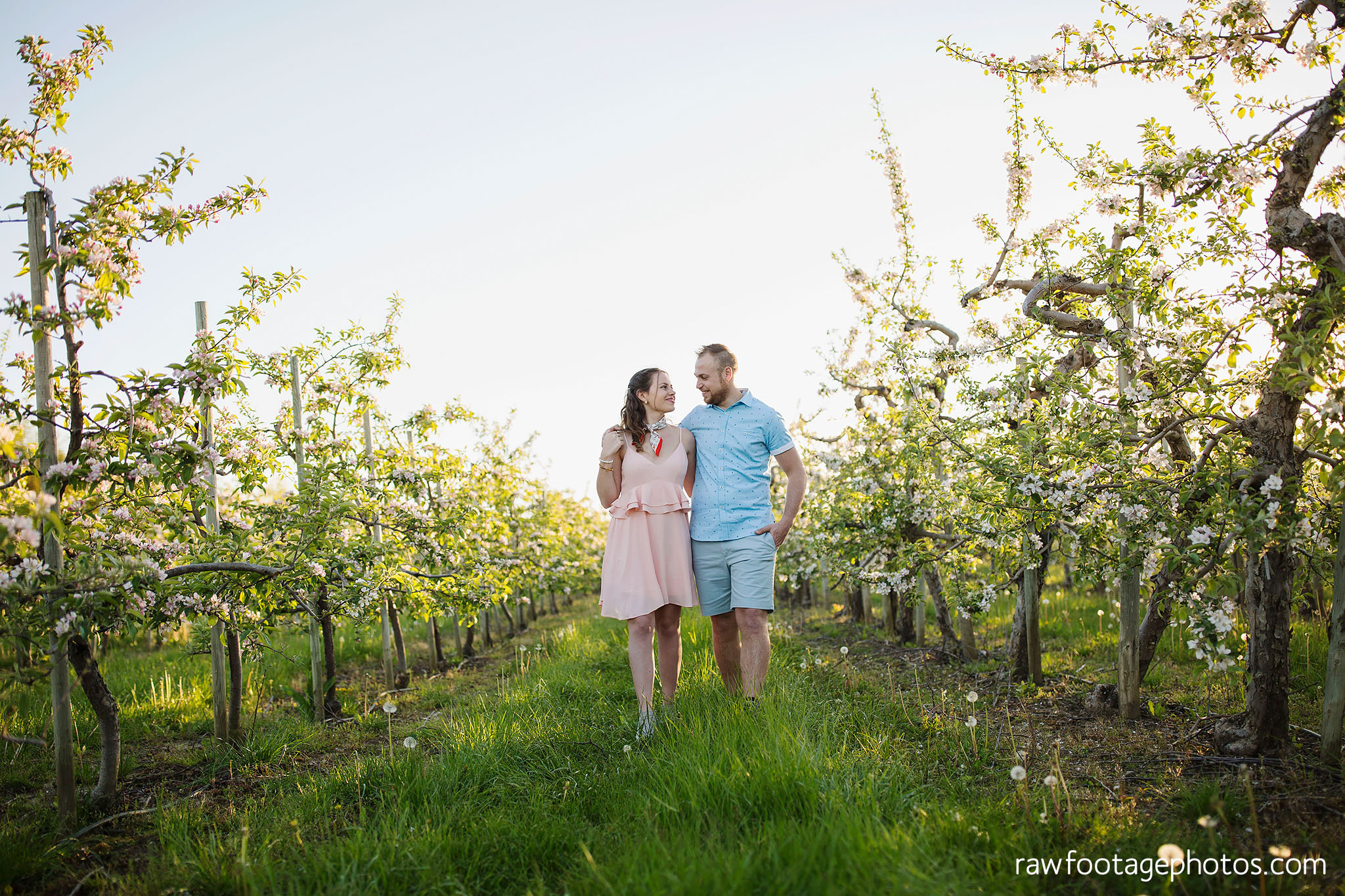 london_ontario_wedding_photographer-raw_footage_photography-engagement_session-airport_session-airplane-balloons-apple_orchard-spring_blooms-apple_blossoms025.jpg