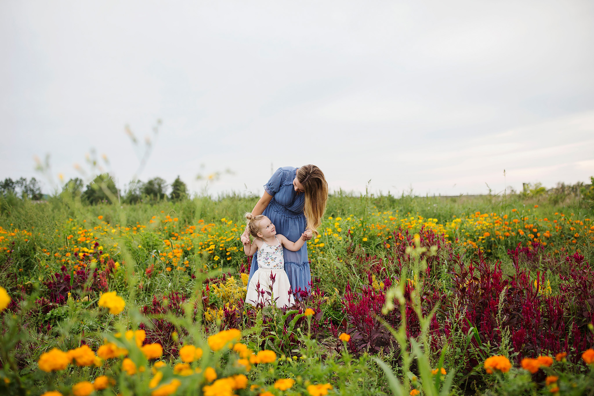 London_ontario_family_photographer-harris_flower_farm-flower_farm_minis-raw_footage_photography018.jpg