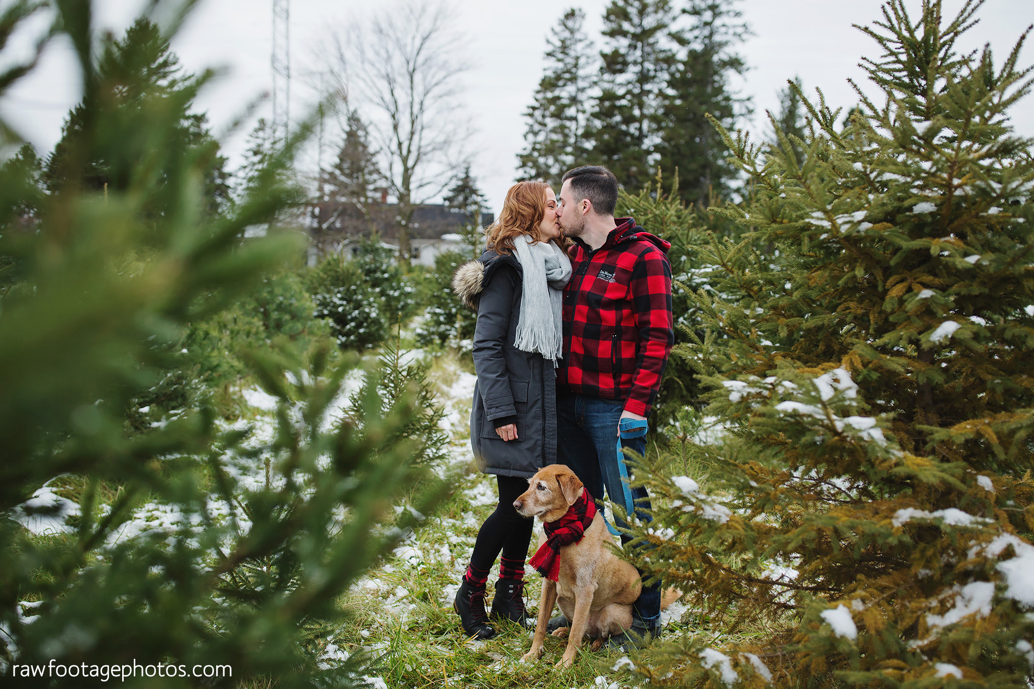 london_ontario_family_photographer-raw_footage_photography-tree_farm_minis-christmas_sessions-winter0015.jpg