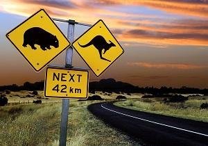 Beware-Wombats-and-Roos.jpg