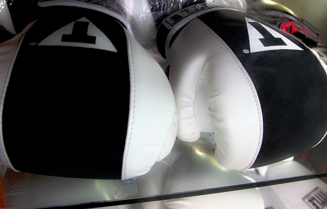 BoxingGlovesSmall.jpg