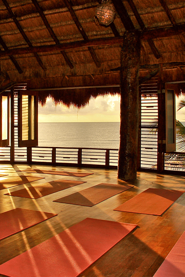A Beautiful Setting - A village like setting with three beautiful yoga shalas, grounds, lounge areas and rooms.