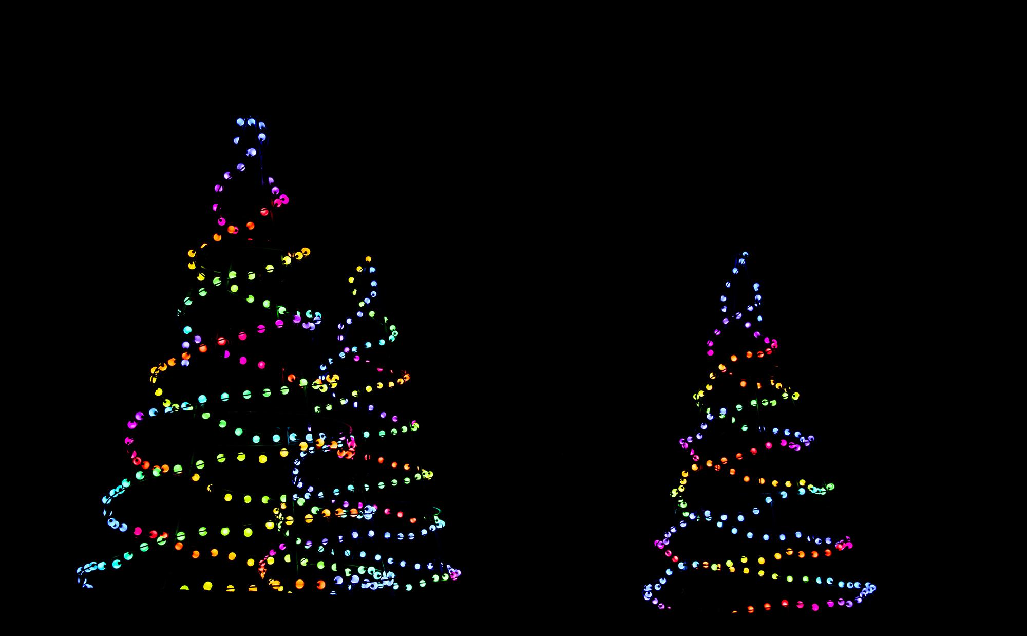 zoolights1_4low.jpg