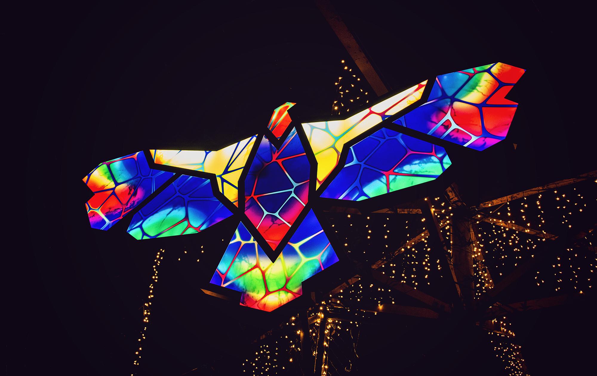 zoolights1_8low.jpg