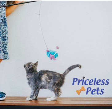 Priceless Pets_1.png