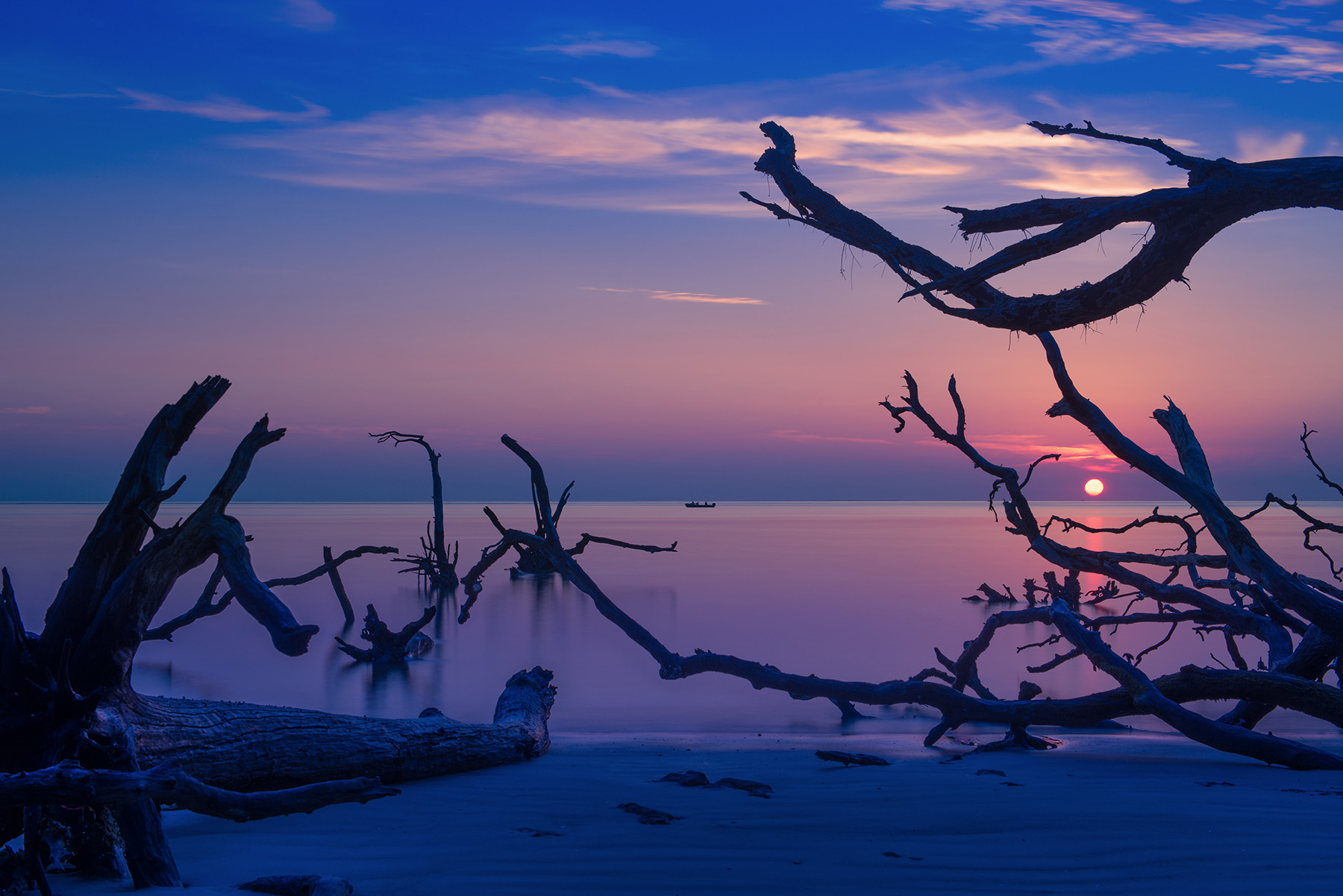 Big Talbot Island - A great little place to catch a sunrise, and only about 45 minutes north of Jacksonville Beach. The driftwood on the beach is constantly moved around by the tide, so every time you visit you have no idea what it's going to look like. How cool is that?!