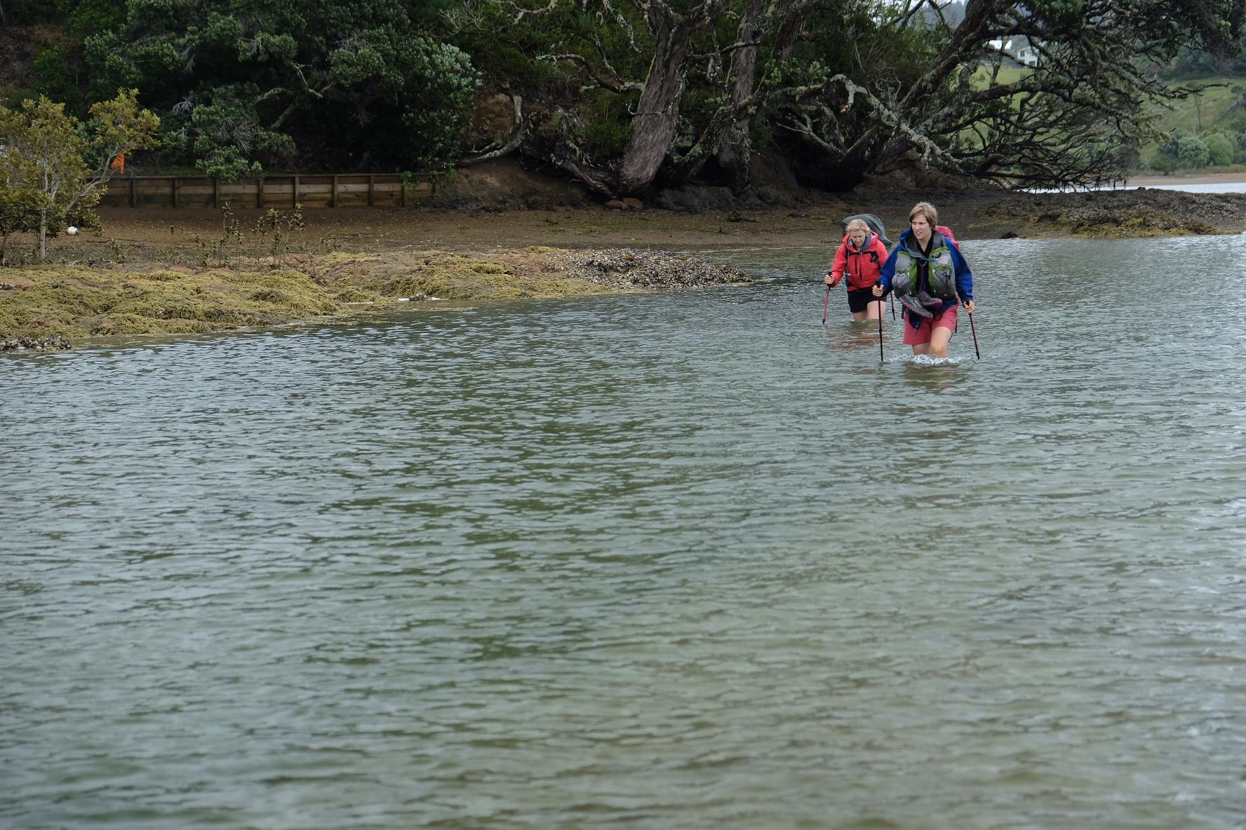 Crossing Tauharuru estuary