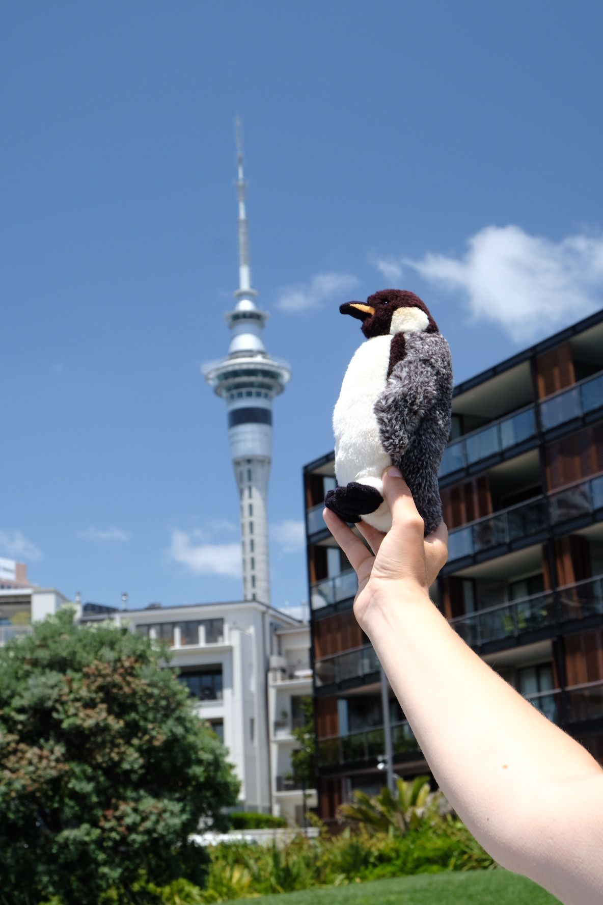 Skytower (actual size) and Philip