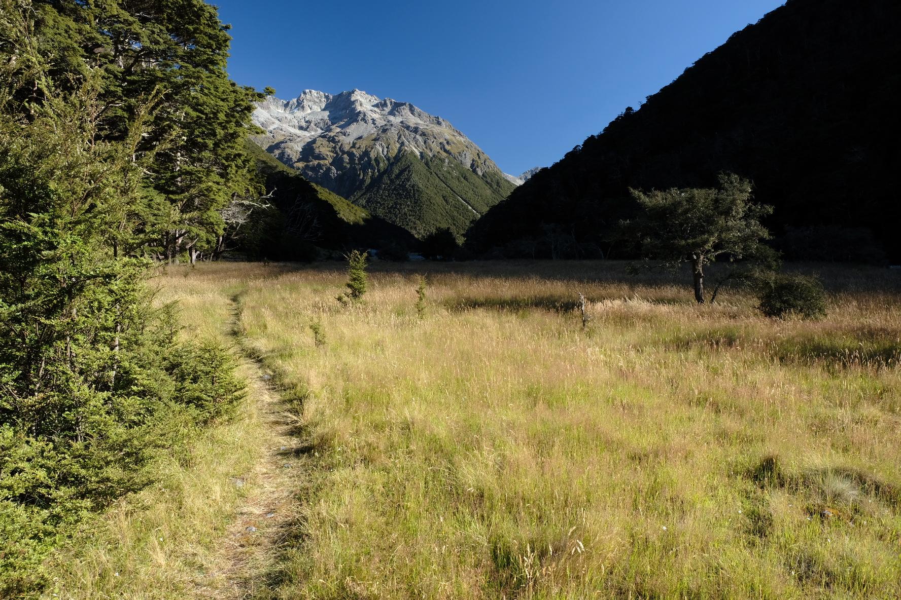 A grassy valley