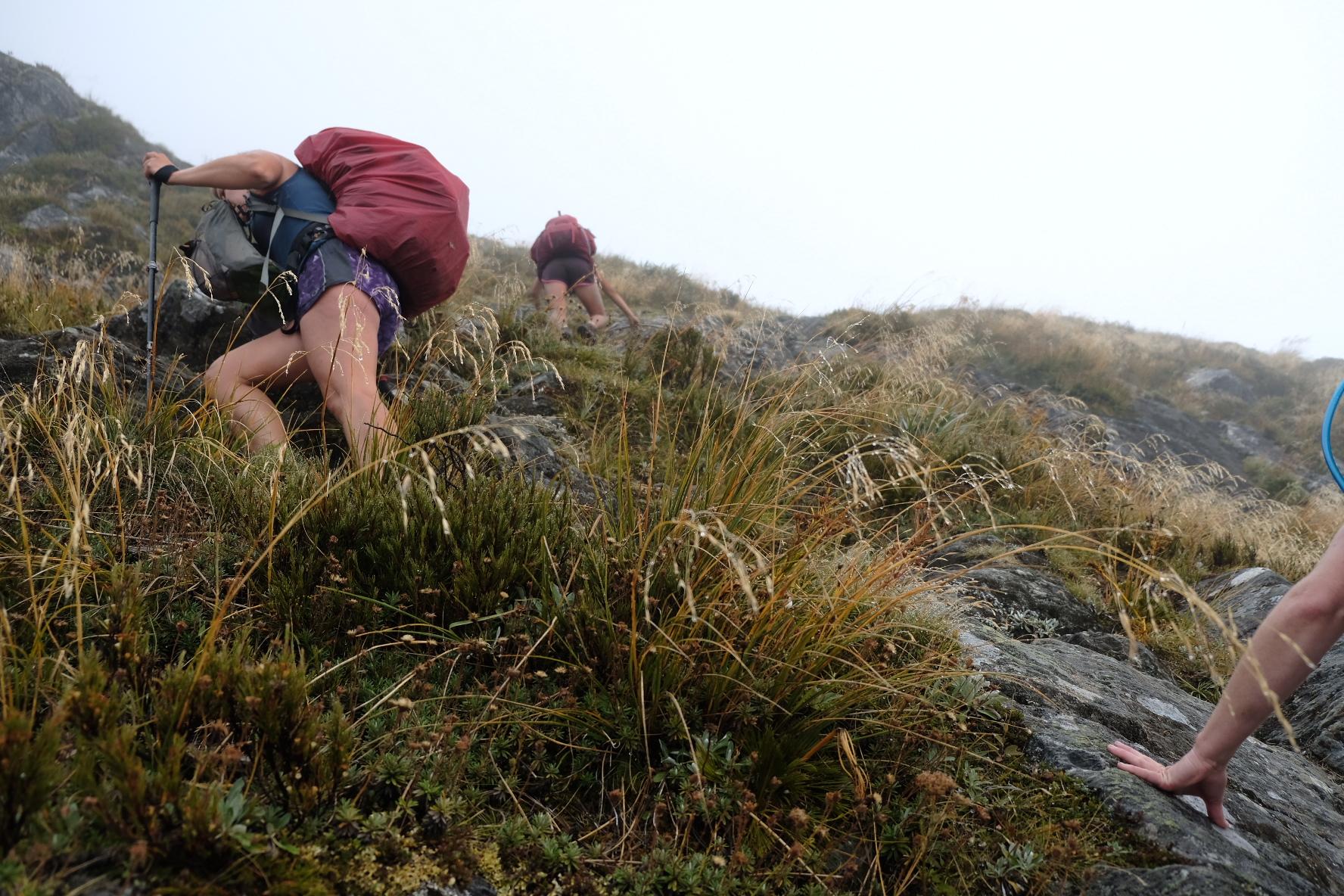 A steep bit