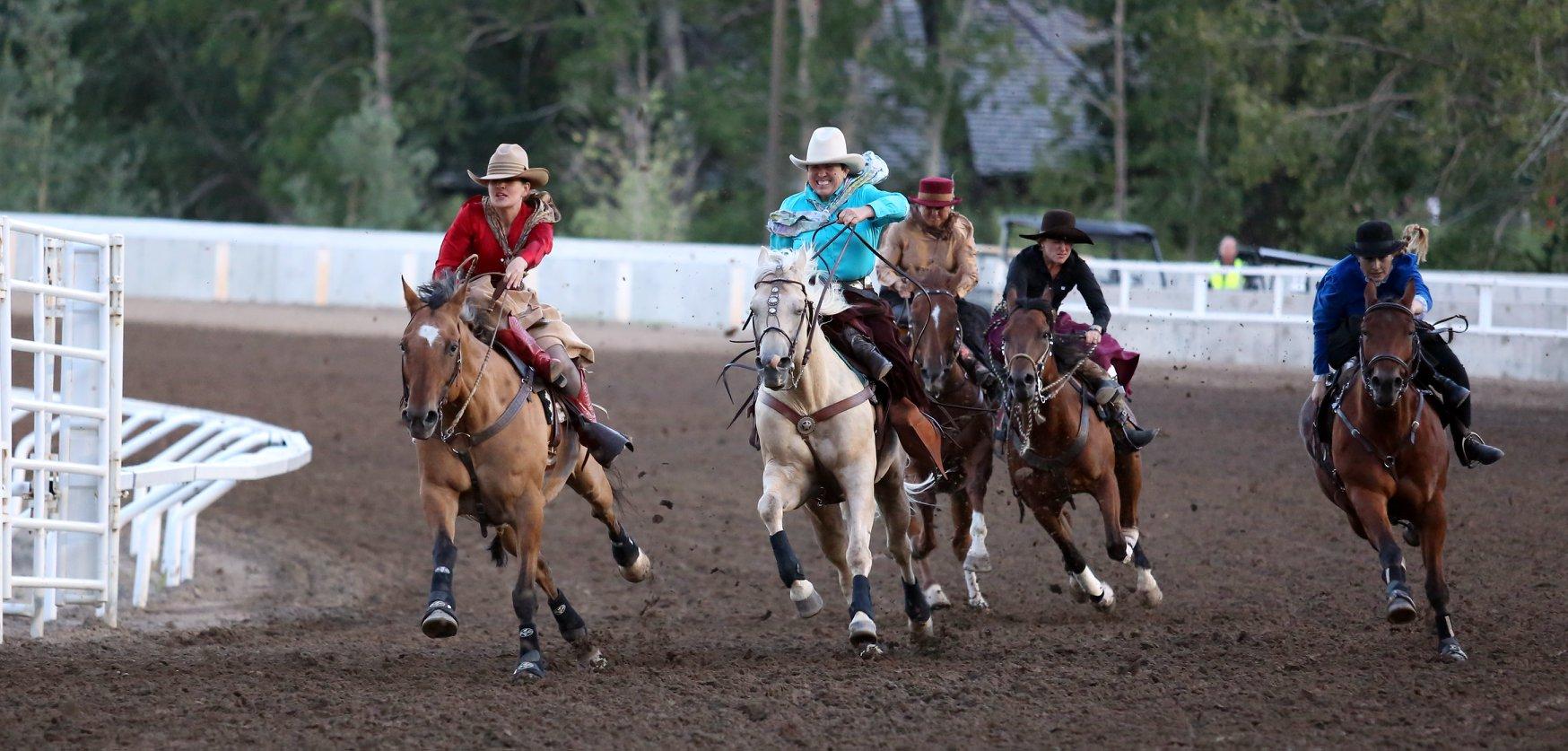 Calgary Stampede- Lorraine Hjalte.jpg