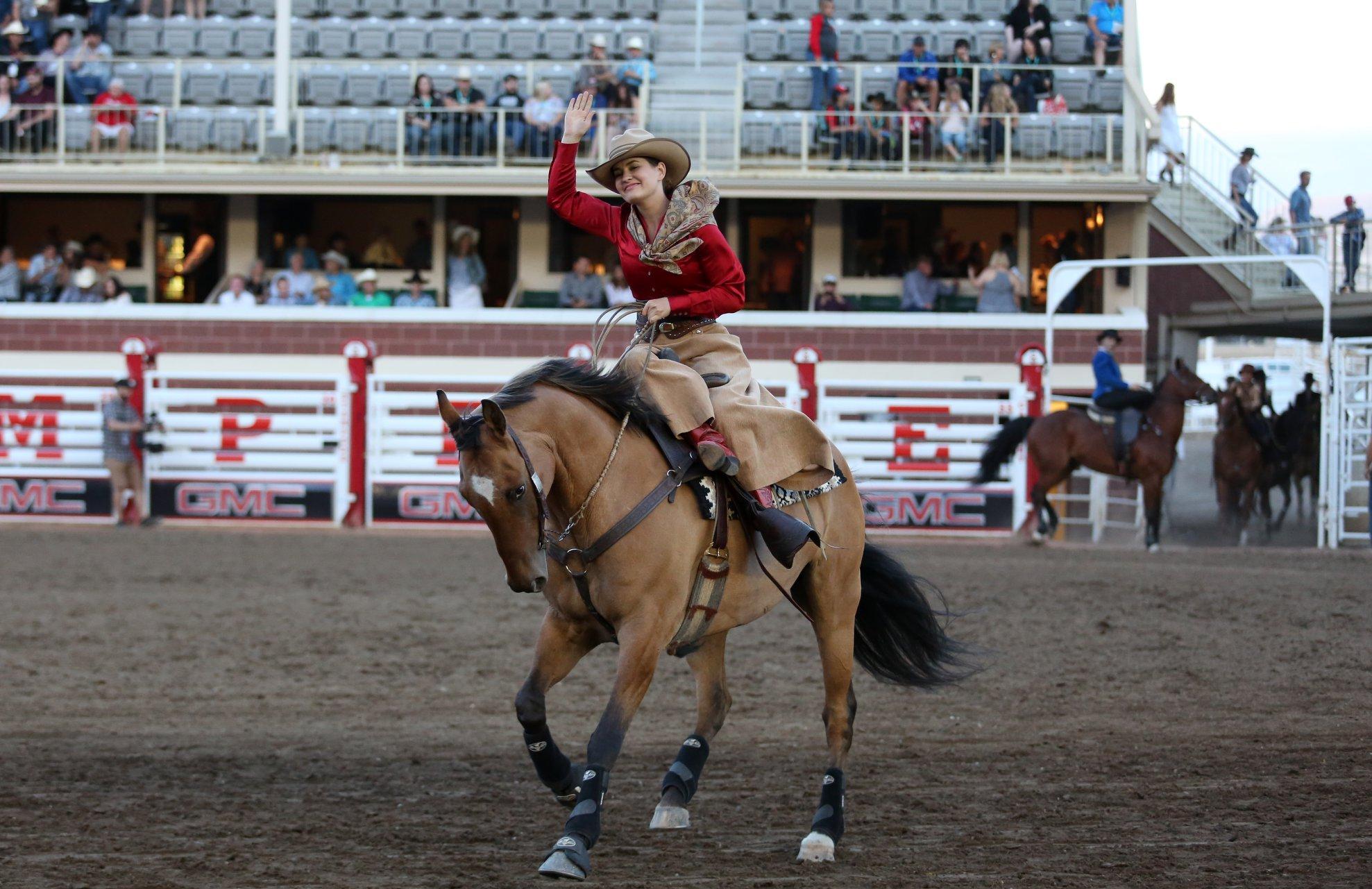 Calgary Stampede- Lorraine Hjalte Photo.jpg