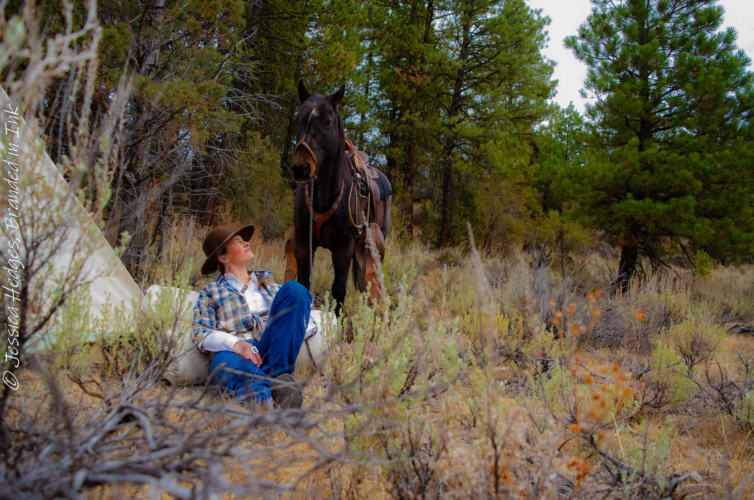 Branded in Ink, Jessica Hedges, Randi Johnson, bridle horse, cow camp, Desert Wind Boutique