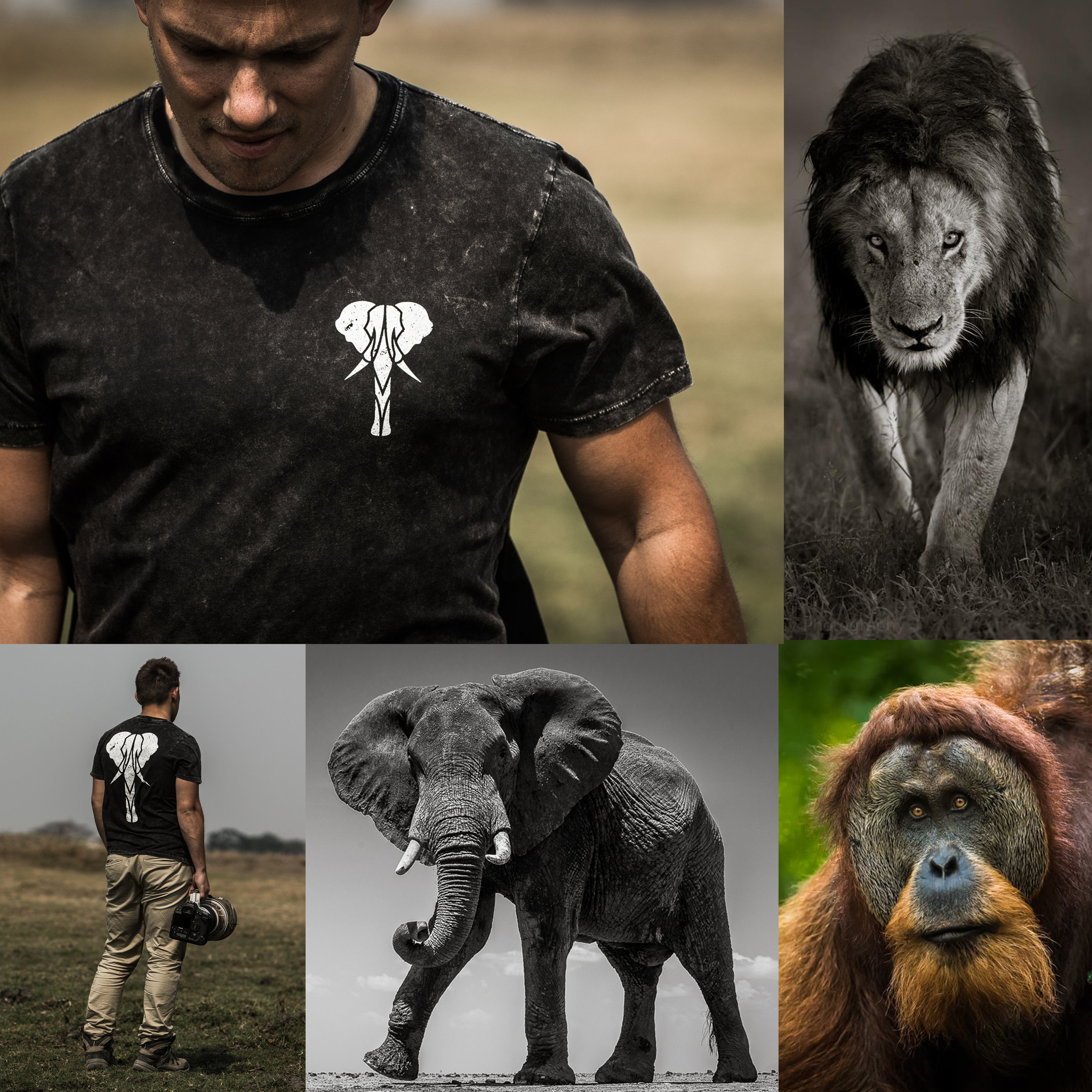 Tom Way - Award Winning Wildlife Photographer   Tom Way is an extremely talented wildlife photographer. He's traveled far and wide to photograph some of the most beautiful animals in the world and even takes budding photographers on safari to get great photos of their own!  Tom wears his Ages Apparel Signature Tee on location as the organic cotton is comfortable and breathable for those long shoot days in the savanna.  Learn more about Tom here >   https://agesapparel.com/magazine/the-tribe-has-talent-tom-way