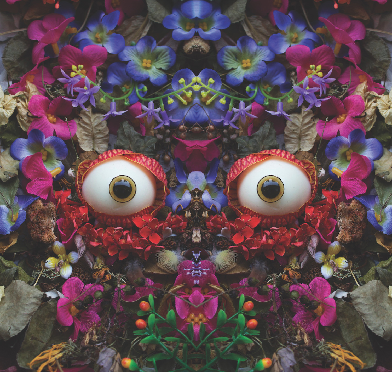 tropical0276  copy.jpg