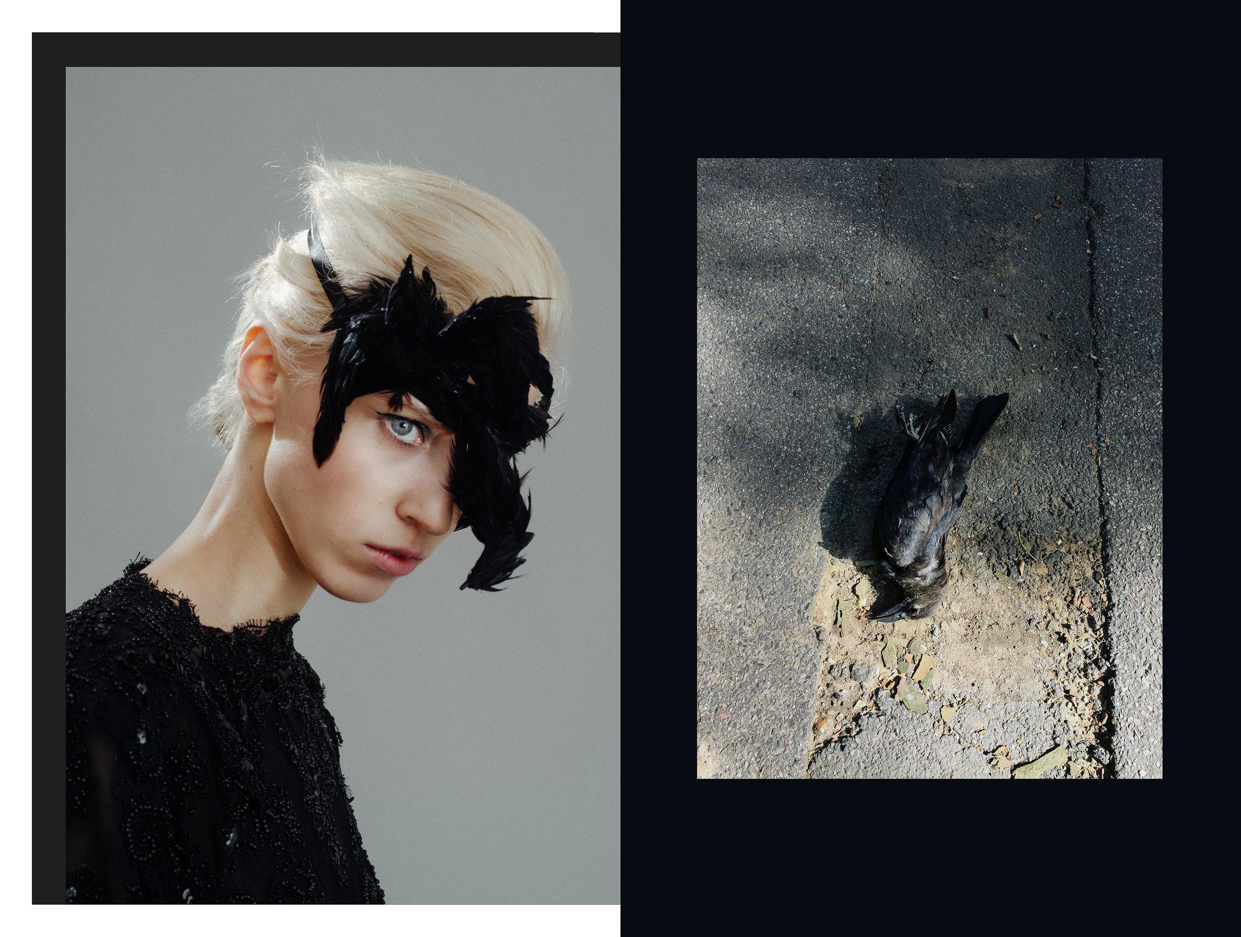 crowcollage.jpg