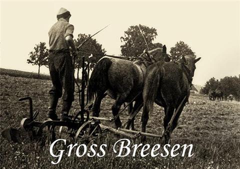 horseandfriedel.jpg