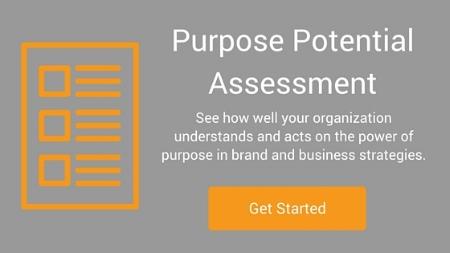 1f074-purposemarketingpotentialassessmentpurposemarketingpotentialassessment.jpg