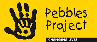 Pebbles Project.jpg