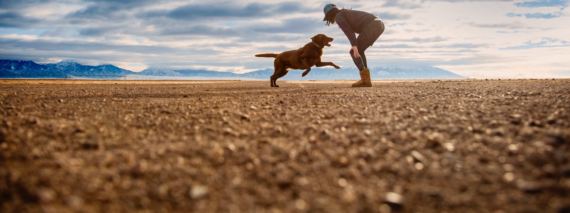 Making the planet a better place for dogs & humans to live and play. -