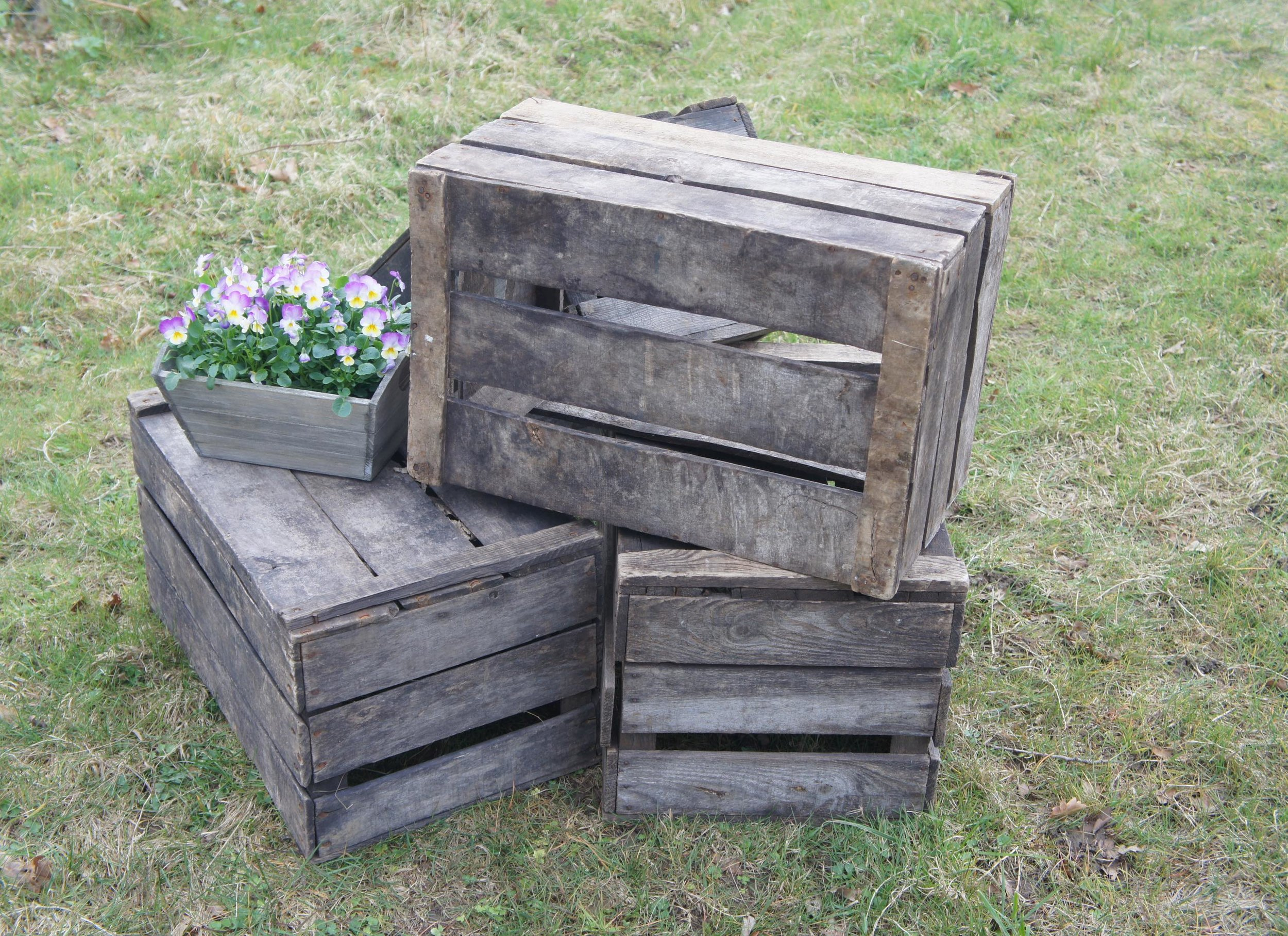 VINTAGE APPLE CRATES -