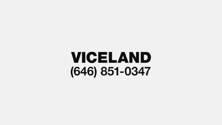 VICELAND - Network Design