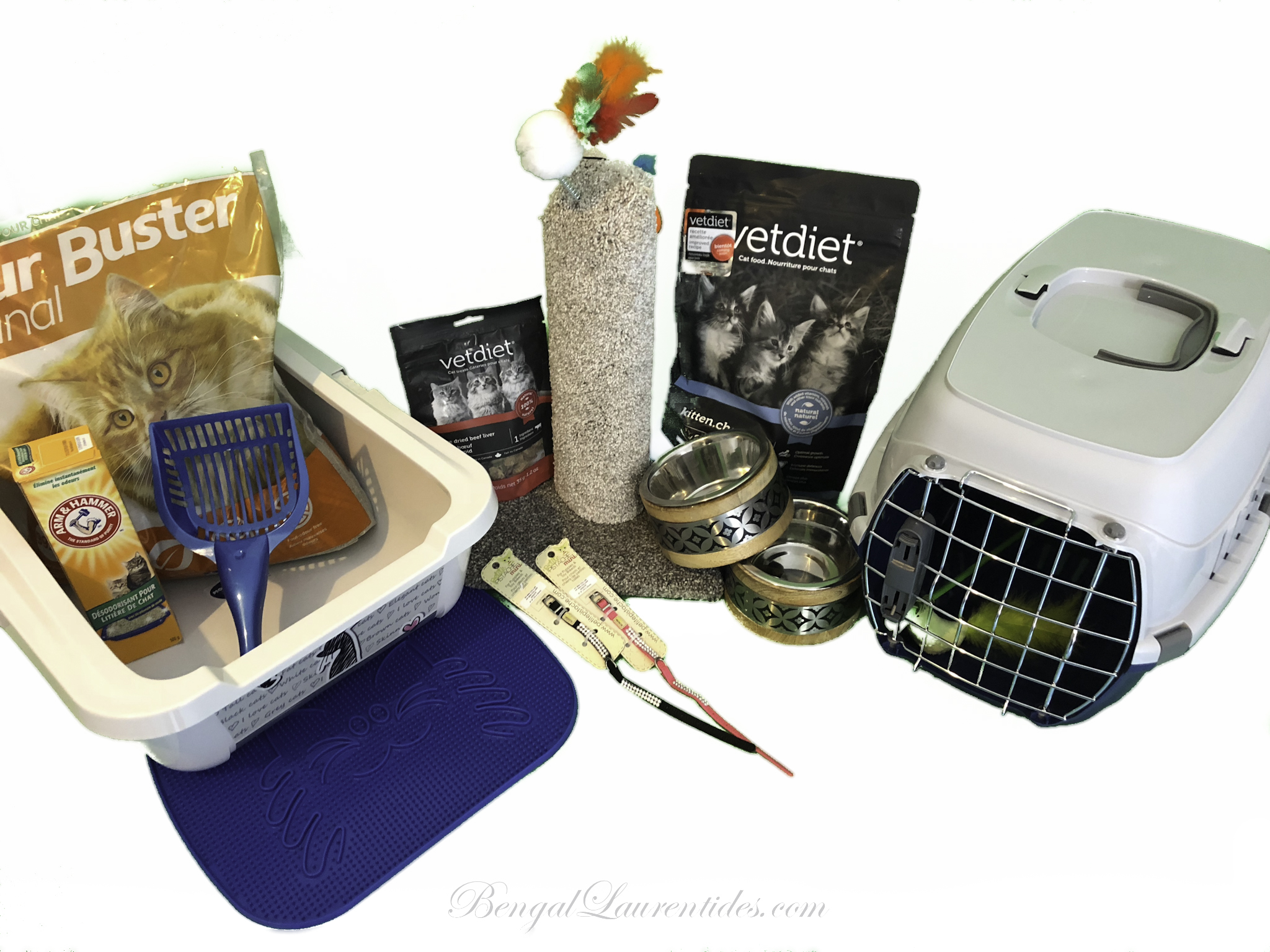 Starting kit - Litter, shovel, deodorant, carpet, litter sand, transport cage, two bowls, a necklace, treats, food bag, scratching post, toy.
