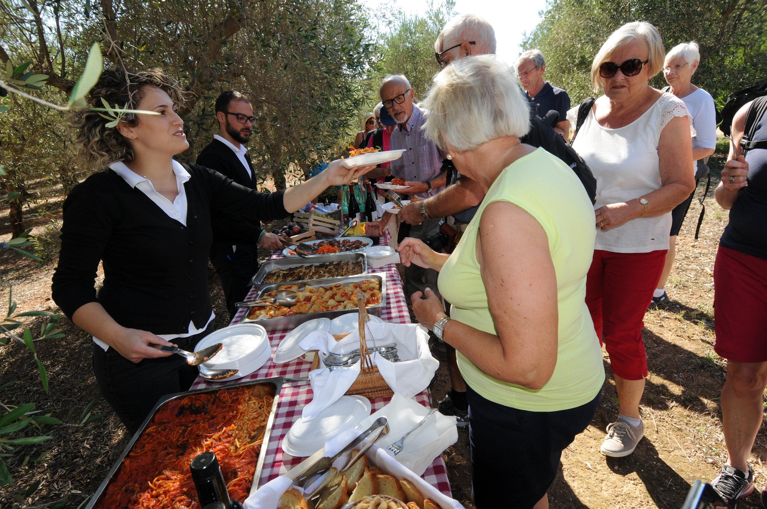 Lunsj i olivenlunden Masseria Salamina Foto Kjell Helle-Olsen (2).JPG