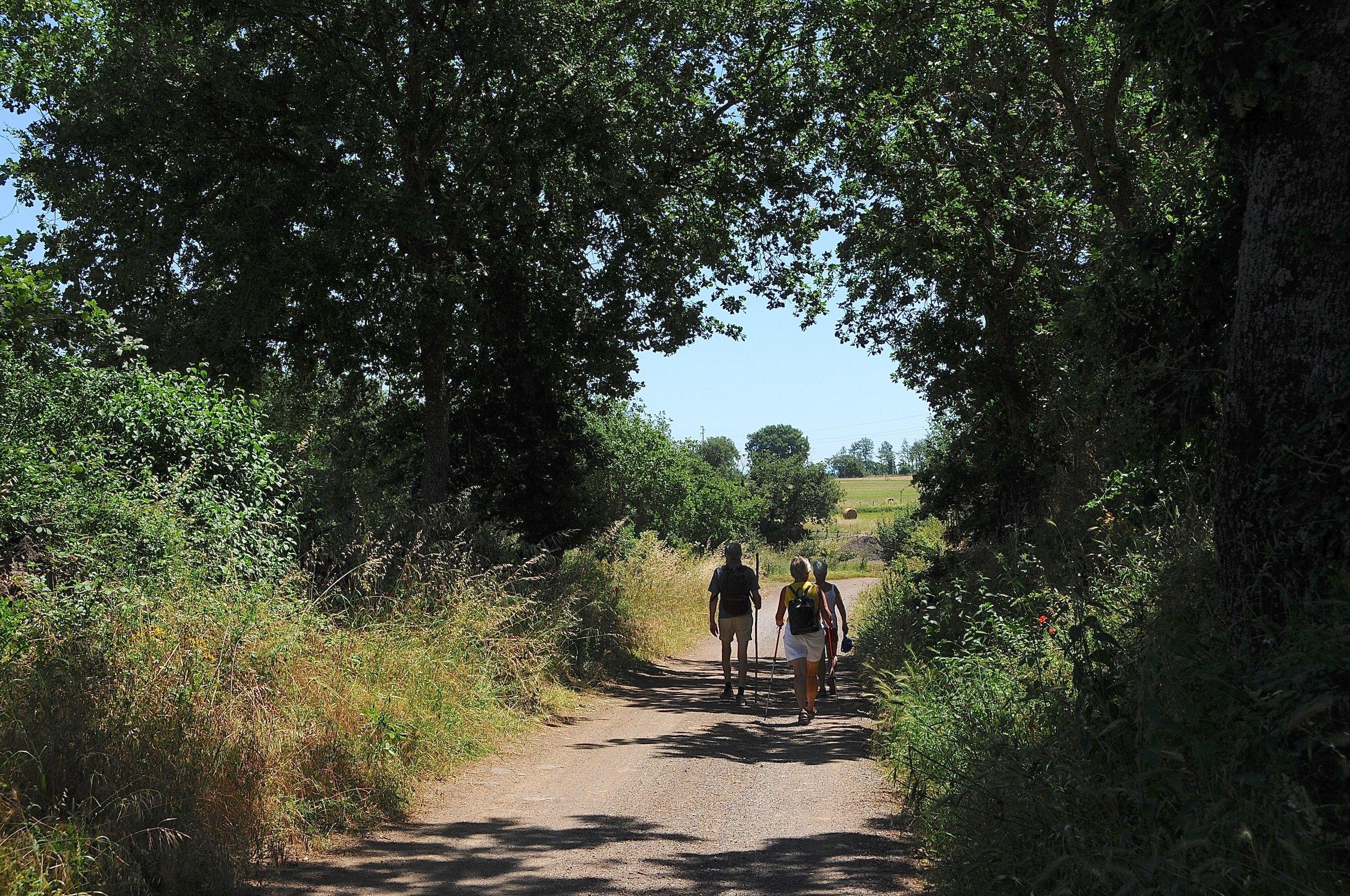 Monterosi - Campagnano di Roma Foto Kjell Helle - Olsen (31).jpg