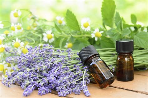 intro to essential oils staci labuda.jpg