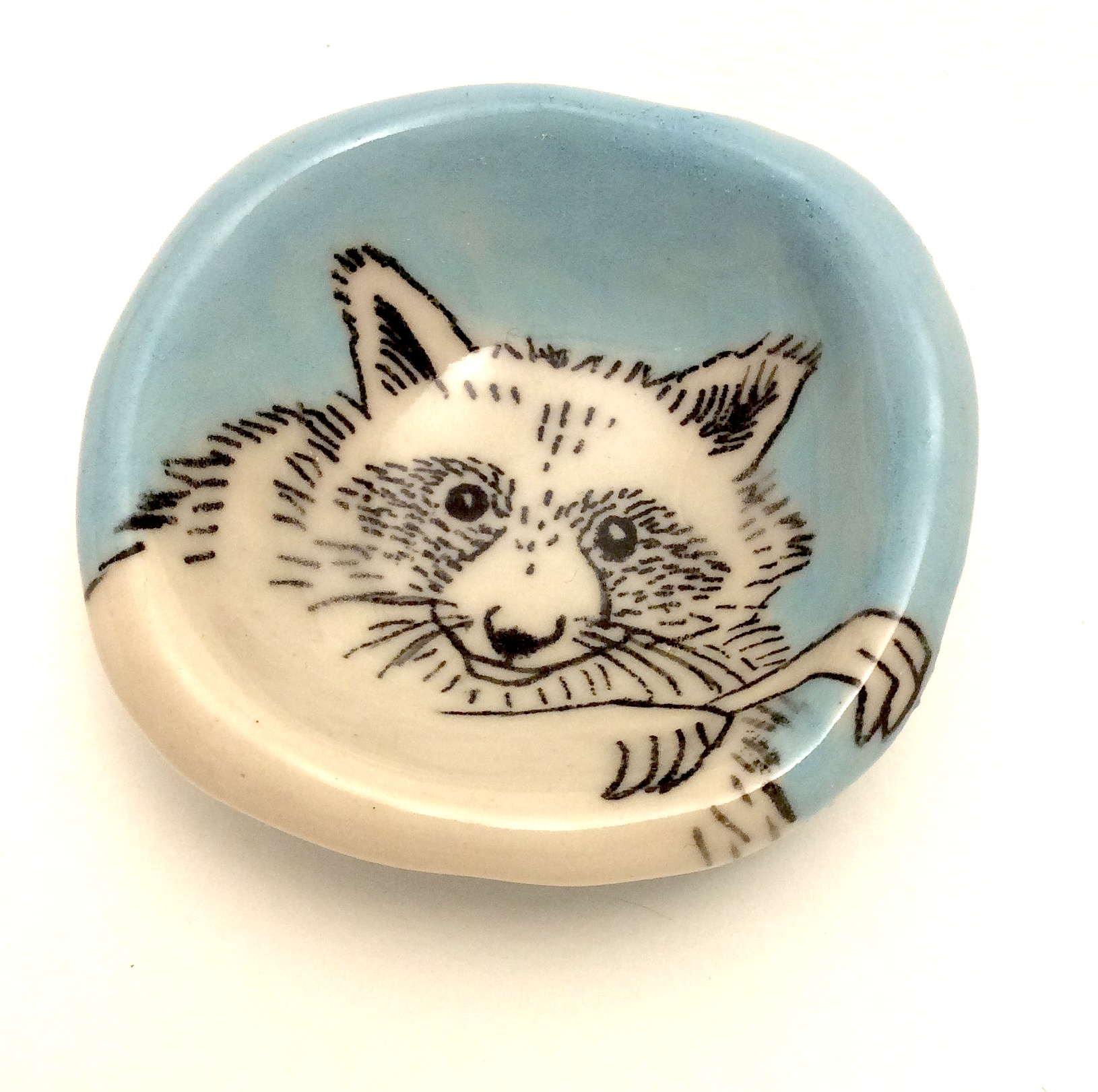 Raccoon Pinch Pot