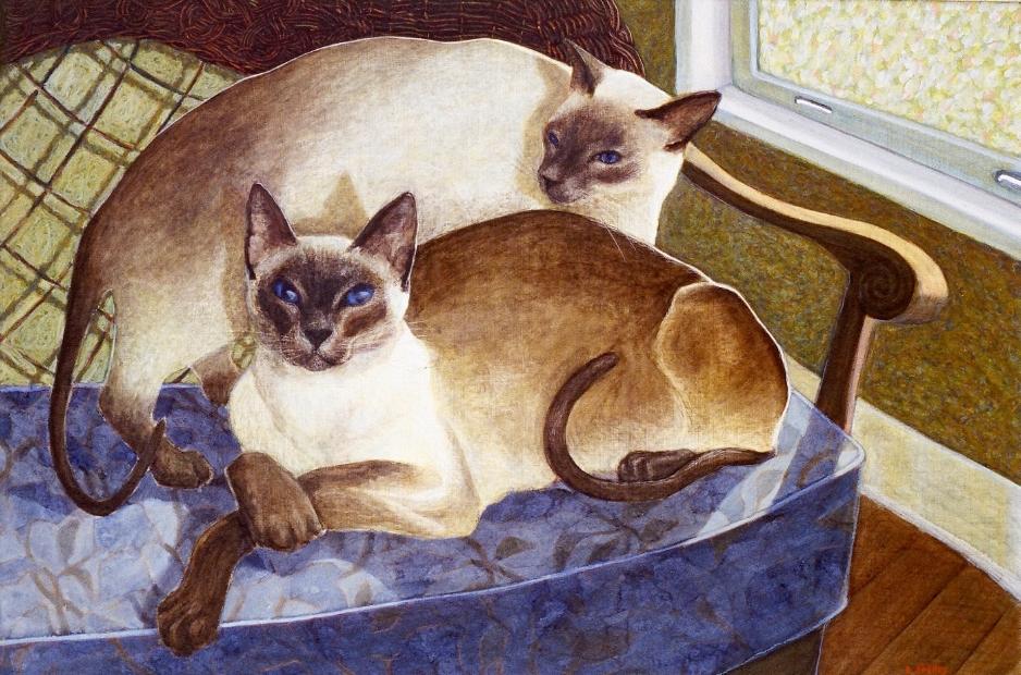 Sunny and Max - Siamese cats