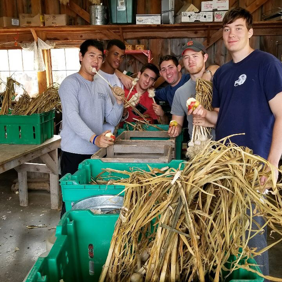 Brothers volunteering at West Haven Farm during Cornell's Into the Streets (ITS) day of service