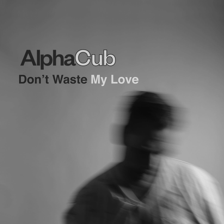 JPEG AlphaCub_Don't Waste My Love.jpg