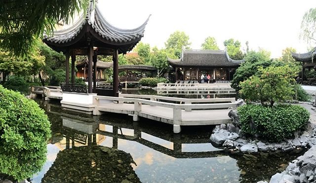 Things have been quiet over here on @acupofportland, but fear not, I'm still here! . Things have been crazy work wise, so I've been seeking out some quiet time. In doing so, I found a spot to share with you! . The Chinese Garden here in #Portland is the perfect spot to decompress, have a delicious cup of @taooftea tea, and ponder the meaning of life with a friend or two. . Whether you're a local Portlander, or are here visiting the city, I highly suggest you check it out! You may even spot a giant koi fish or two!