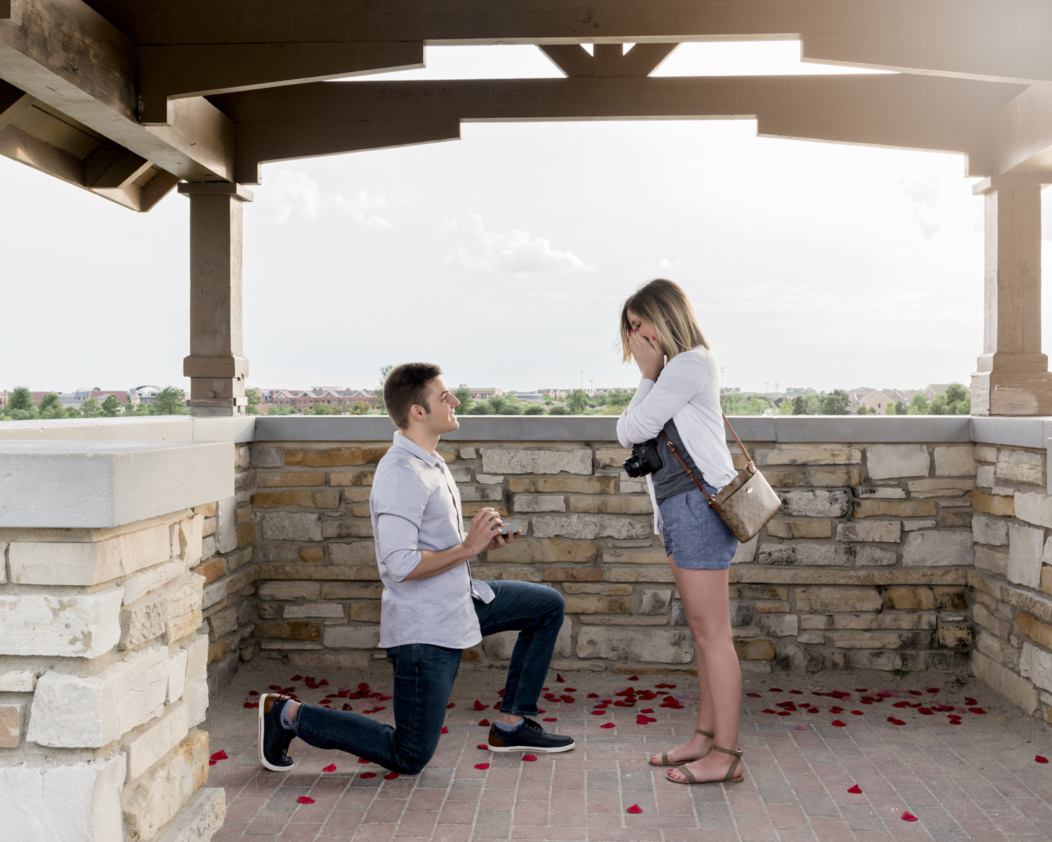 Alex and Emily's Proposal