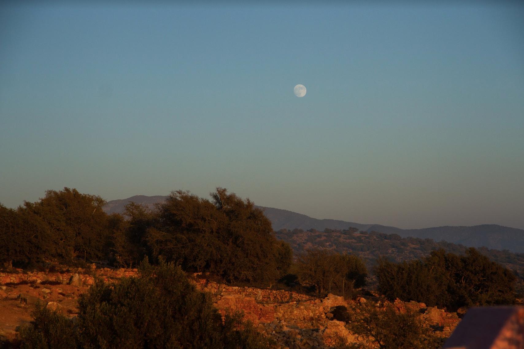 View from Tamazirt