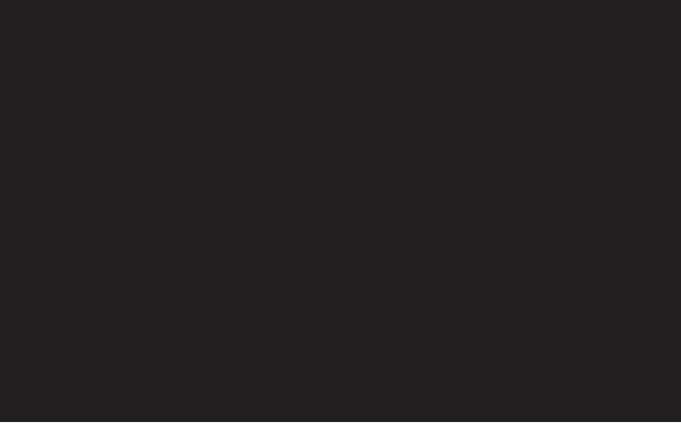 MV logo web.png