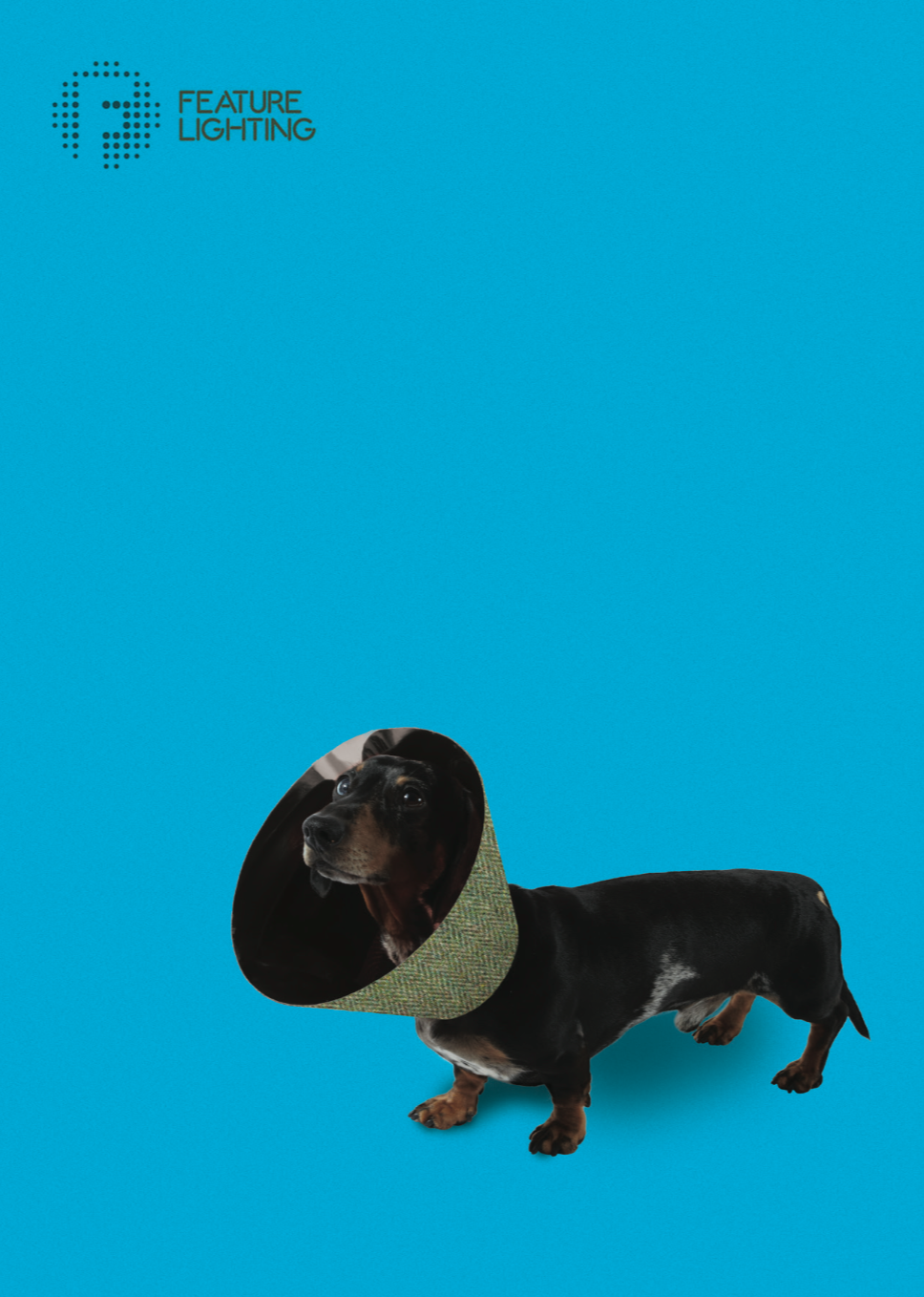 STANLEY - Our little Dachshund chum Stanley always cuts a dash. He configured a herringbone tweed shade. He's always quite fancied a flat cap.
