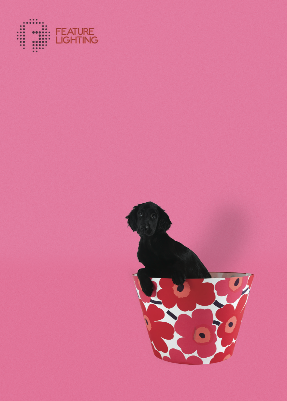 SKY - Sky the Long Haired Retriever configured a Scandinavian design classic lampshade in Marimekko Unikko Fabric. She usually prefers to sit in it though, as you can see.