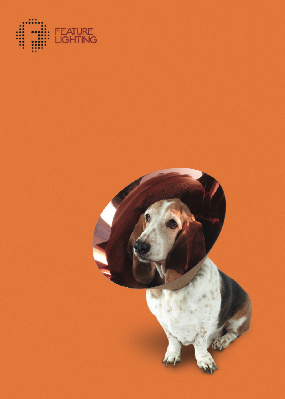 BUSTER - A traditional soul, Buster is our pensioner Basset Hound. He configured a brown and copper lamp shade to match his own lovely colours.
