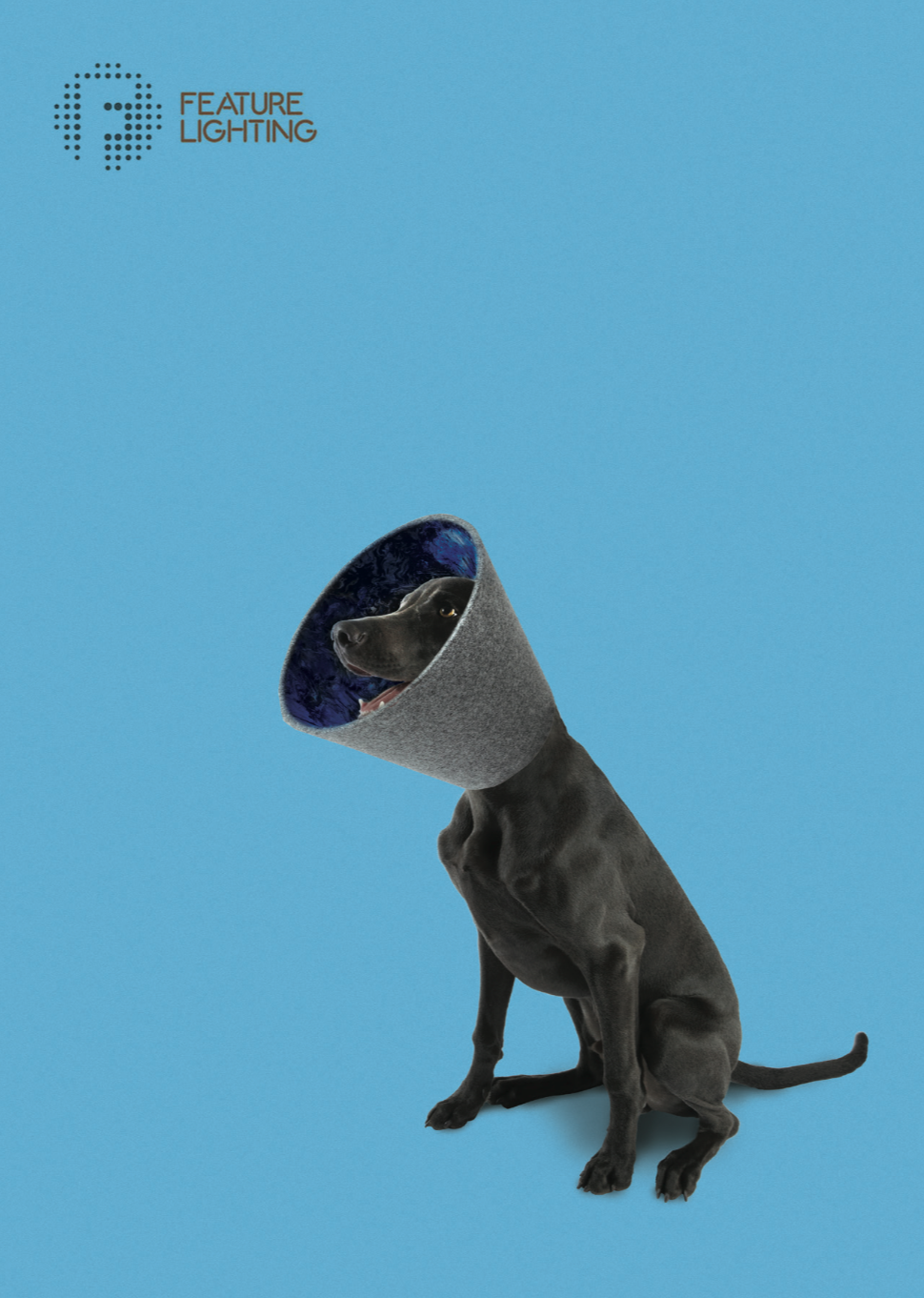 BLU - Our most energetic canine, Blu the Weimaraner configured a marbled blue interior on his shade to create his own namesake. Calm stylish grey wool on the outside + completely nuts on the inside!