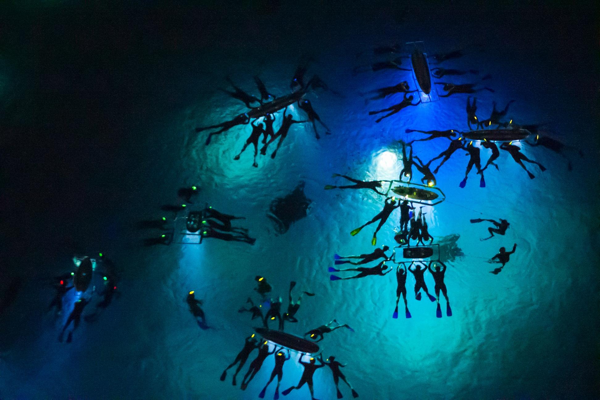 moonlight-manta-ray-swim.jpg