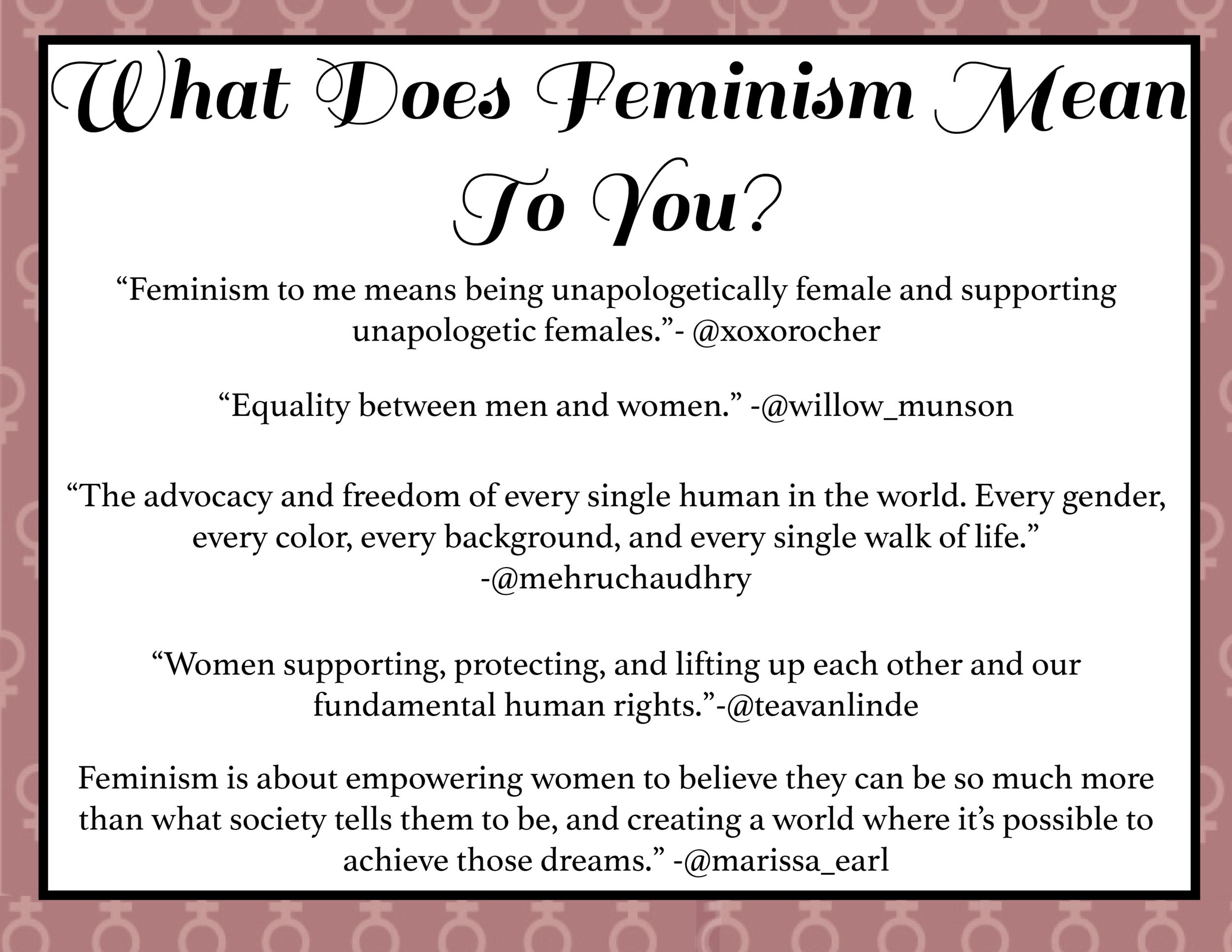 Feminism article.png