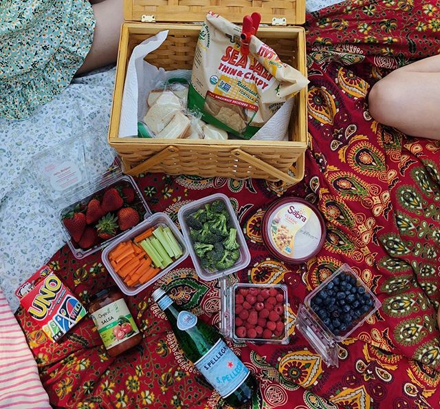 the picnic essentials 🐜
