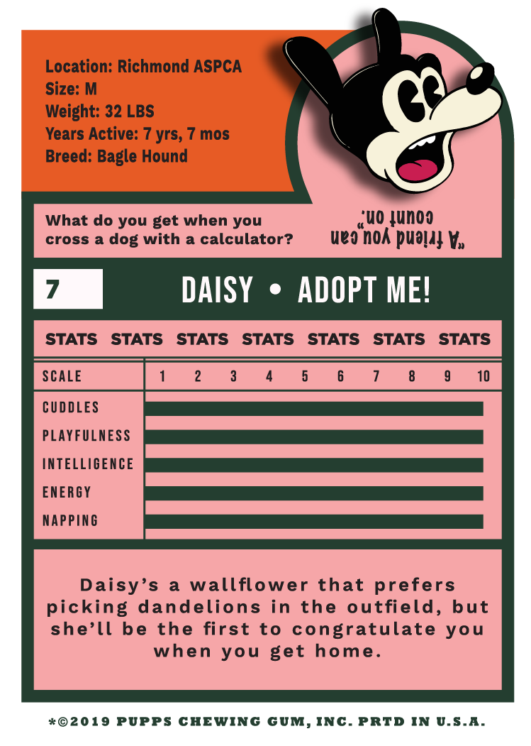 Daisy+2.png