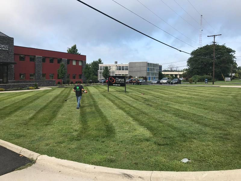 Huge commercial lawn mowed by local lawn care and landscape company.